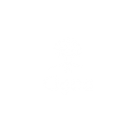 Chiropractor in Belleville NJ that accepts Cigna